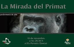 """Cartell de """"La mirada del primat"""""""